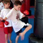 Kids Karate Kicks 4