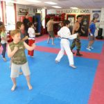 Martial arts Class in Session