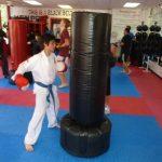 Karate Class Black Punching Bag