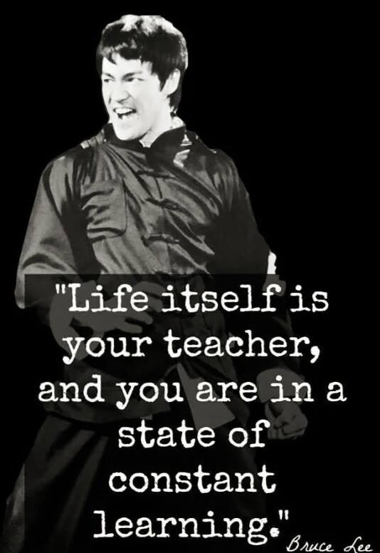 Life is the teacher