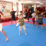 Martial arts Class Lessons