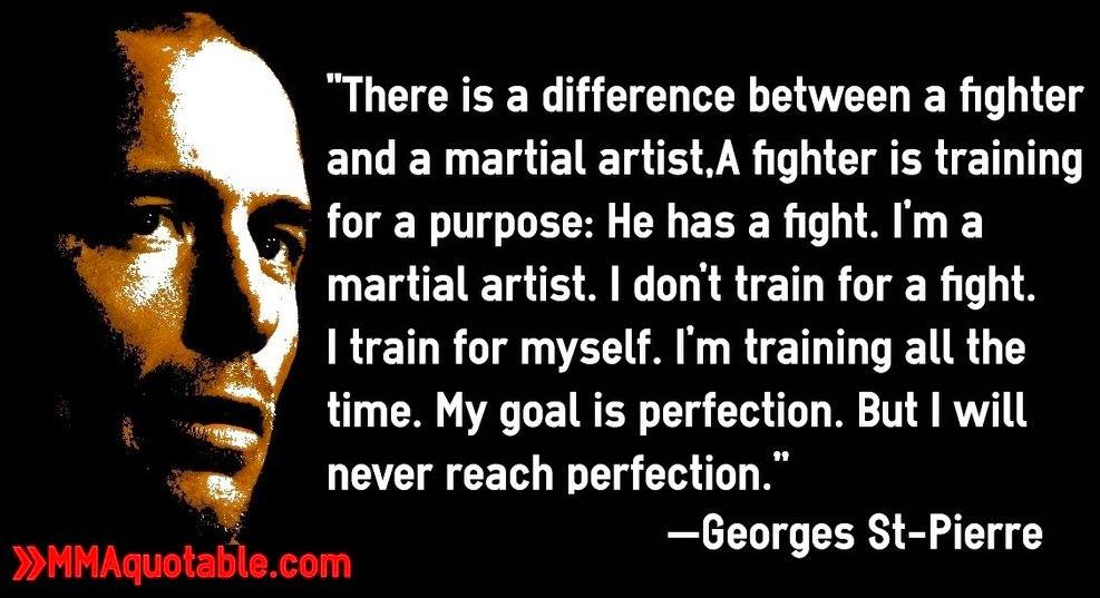 A fighter Vs Martial Artist